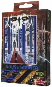 House_Steiner_boxb_small